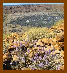 Extração do solo na Austrália.
